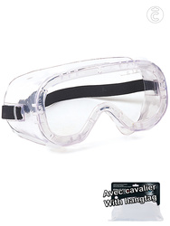 Safety google. Indirect ventilation. Clear anti-fog lens.